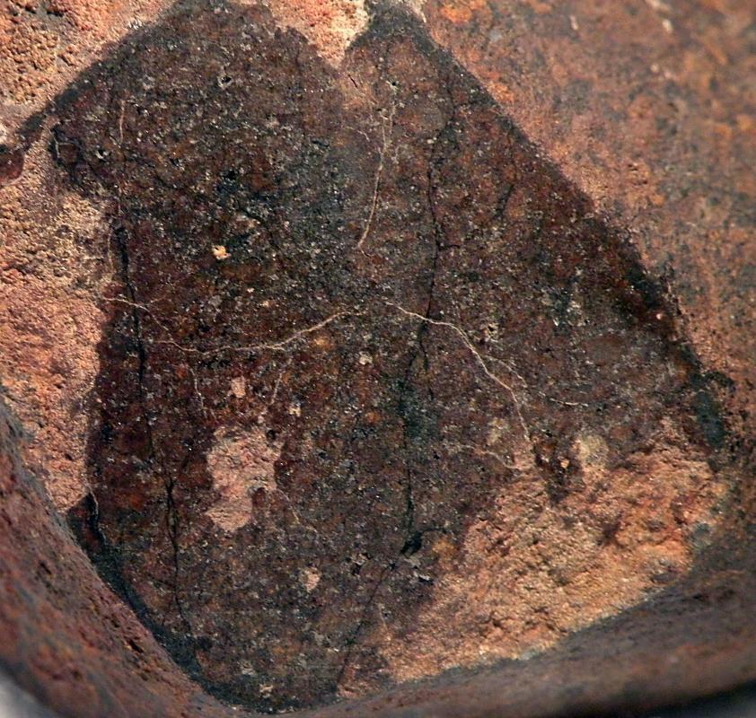 meteorite16