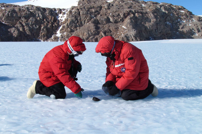 метеорити Антарктика